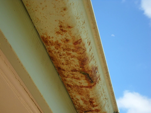 Gutter Repairs Sunshine Coast | Sunshine Coast Gutters